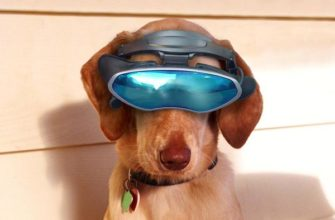 gadgets dog usb на АлиЭкспресс — купить онлайн по выгодной цене
