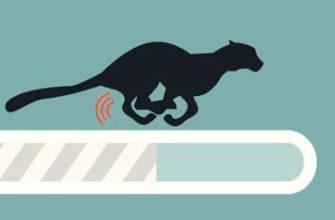 Как можно поставить на сайт speedtest (измеритель скорости интернета) на HTML5? Какие есть варианты? — Хабр Q&A